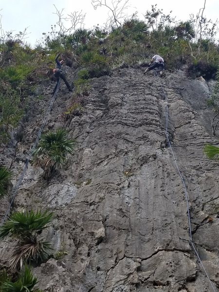 Rock Climbing Photo: Paul about to rap El Puso el Bolt and Brant finish...