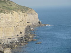 Rock Climbing Photo: Swanage cliff line