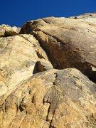 Rock Climbing Photo: Looking up Take Five.