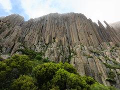 Rock Climbing Photo: Amazing columns at Ben Lomond.