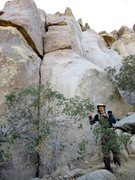 Rock Climbing Photo: Jack of Hearts takes the crack on the left. Popula...
