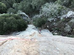Rock Climbing Photo: View to belay from top anchor showing route.