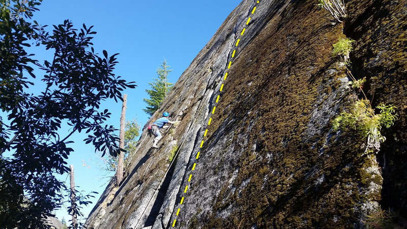 Rock Climbing Photo: Jay Top roping a mossy slab next to Old Dog New Tr...