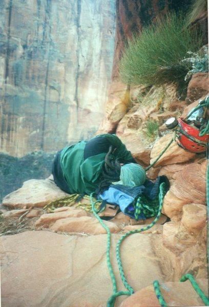 "Rock Climbing Photo: ""sleeping"""