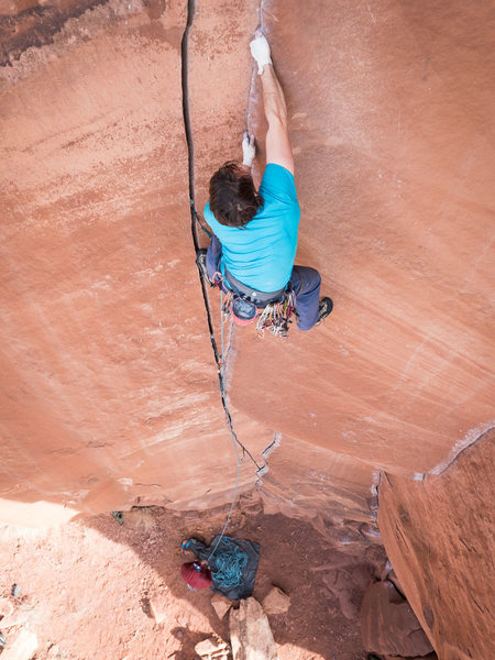 Rock Climbing Photo: A gyps protects one crack and climbs another with ...