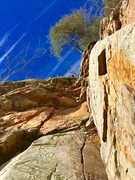 Rock Climbing Photo: Sunny nearing the top of Standard Deviation at the...