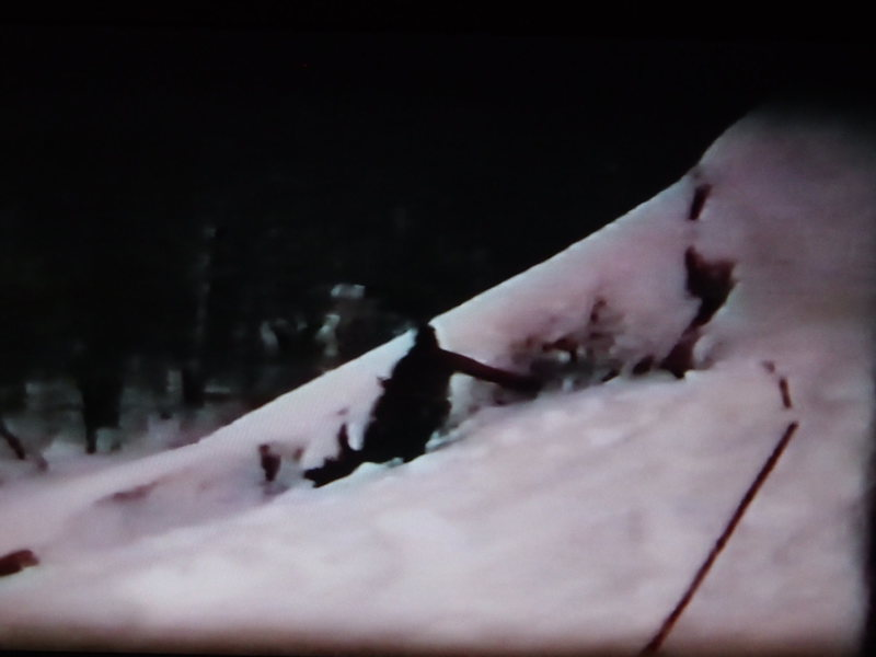In the arch (from Super 8 movie film)