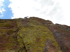 Rock Climbing Photo: Yellow Spur, P5.