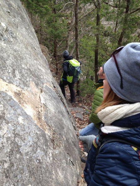 Rock Climbing Photo: Trail Improvements