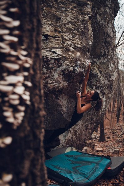 Rock Climbing Photo: Andrea cranking it out on Ozark Lean