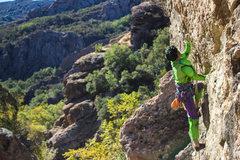 Rock Climbing Photo: Climbing Fissure Man as The Hulk on Halloween