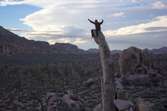 Rock Climbing Photo: Aiguille de Joshua Tree