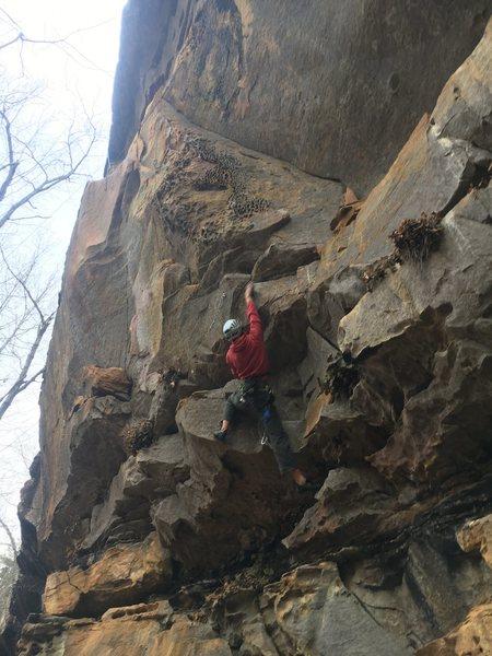 Rock Climbing Photo: Achilles Heel's honeycomb