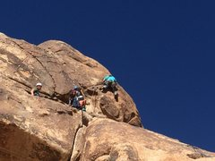 Rock Climbing Photo: Protecting the Crux on the right leaning crack.
