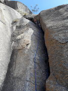 Rock Climbing Photo: TT leading Pitch 3; the tree at the top is the bel...