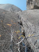 Rock Climbing Photo: Pitch 7 till the cactus tree high above. Corner cl...