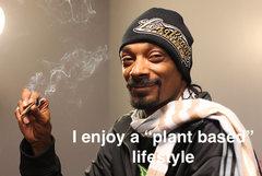 the marijuana it is plant based yes?