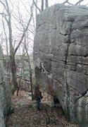 Rock Climbing Photo: Looking up at Freed's Fall