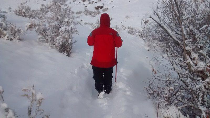 Dashing through the snow...sorta.