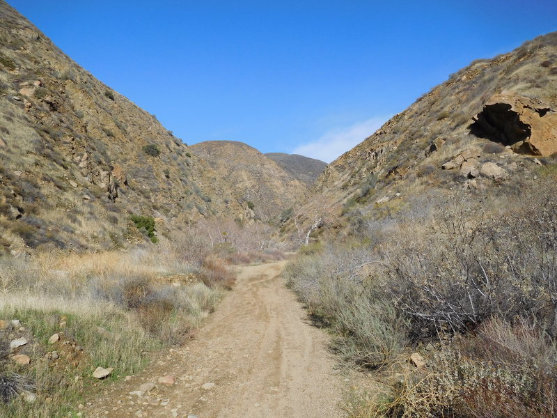 As the description indicates once across the bridge the dirt road splits. Continue left at the split and into this canyon.
