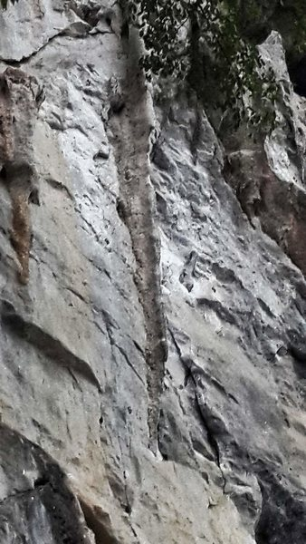 Rock Climbing Photo: Tufa pic! Layback on left side :)