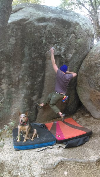 Rock Climbing Photo: Farmer Dan and his dog.