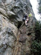 Rock Climbing Photo: Patty Black moving onto the fat rib on Franc Tireu...