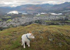 Rock Climbing Photo: Bess above Keswick