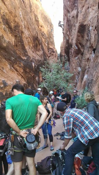 Rock Climbing Photo: Crowded.