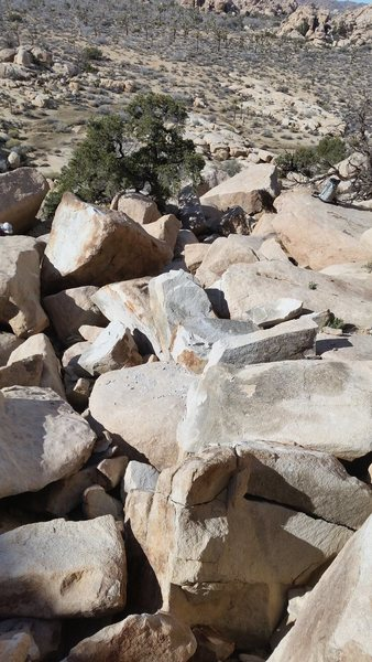 Rock Climbing Photo: The new rubble below the cliff. The van-sized bloc...