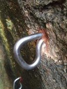 Rock Climbing Photo: Grade 2 Titanium bolt in Cluster 38 of 'Thaila...