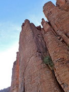 Rock Climbing Photo: AMH on the FA, dodging the rap lines. Pic by Nesto...