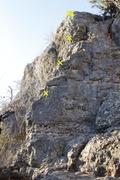 Rock Climbing Photo: Zoey's Arete