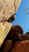 Rock Climbing Photo: Pete Tagala working out the difficult start of Ora...