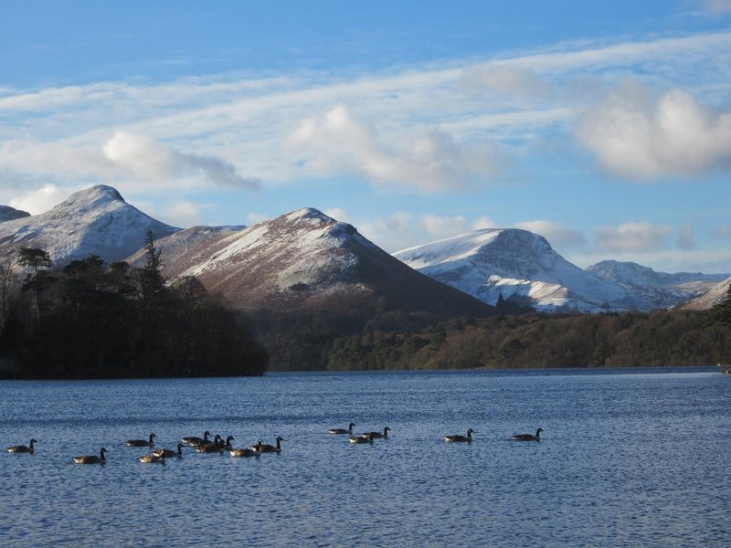 Catbells and Robinson