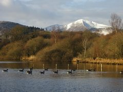 Rock Climbing Photo: Geese and Grisdale Pike