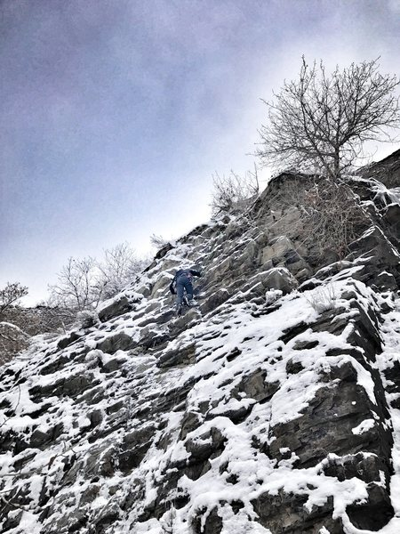 Rock Climbing Photo: Scratch and Sniff, December 2016