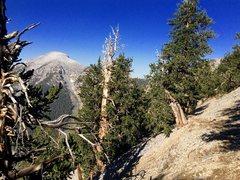 Rock Climbing Photo: Mt Charleston Peak, Southern Nevada