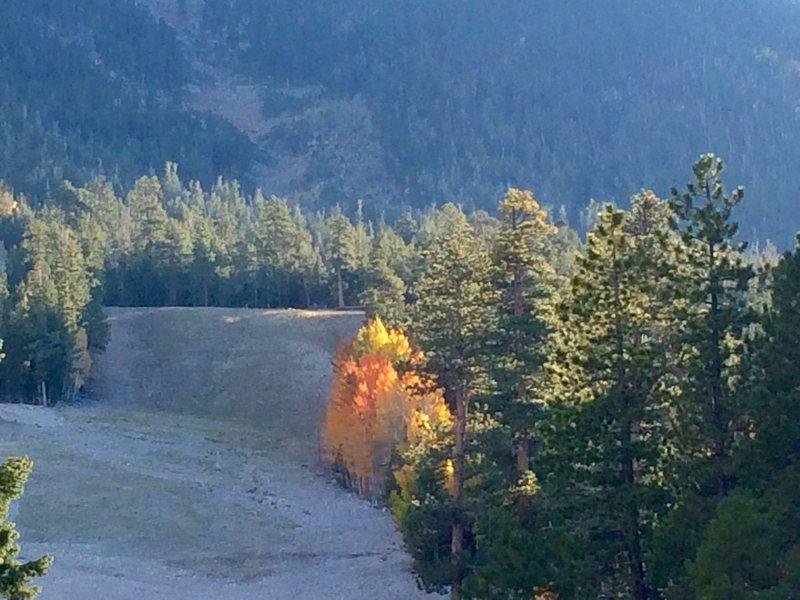 Upper Bristlecone Trail, Fall 2016