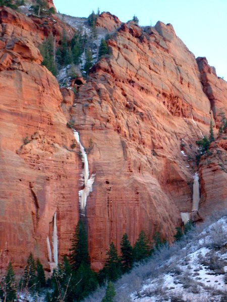 S. Fork Taylor Creek, Zion Ice