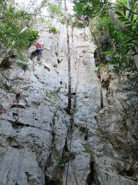 Rock Climbing Photo: Muralla Pitu wall. Climber on left is on Comiquita...