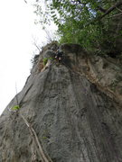 Rock Climbing Photo: Climber near the top of Los Putre.