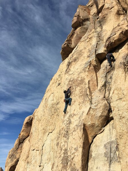 Rock Climbing Photo: Climbers on Sig Alert and Nobody Walks in LA