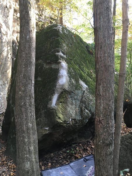 Rock Climbing Photo: Shorty