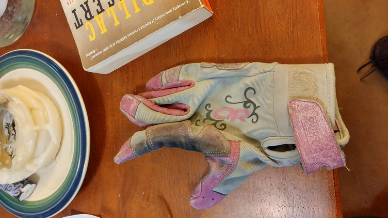 Outdoor Research lavender-on-gray glove