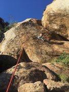 Rock Climbing Photo: Cougar Crag
