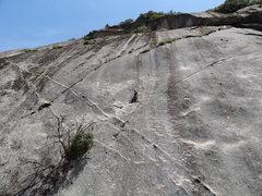 Rock Climbing Photo: The dead tree fell off the wall, making the climb ...