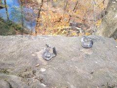 Rock Climbing Photo: Bolts at Allenbrook