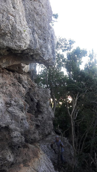 Rock Climbing Photo: Ambarabacicicocco