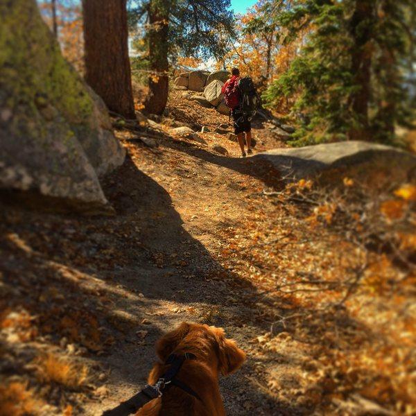Rock Climbing Photo: Lovely fall approach to Kindergarten Rock